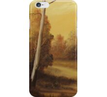 Country Road Sunset iPhone Case/Skin