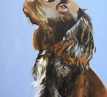 Spaniel Painting by Emily King