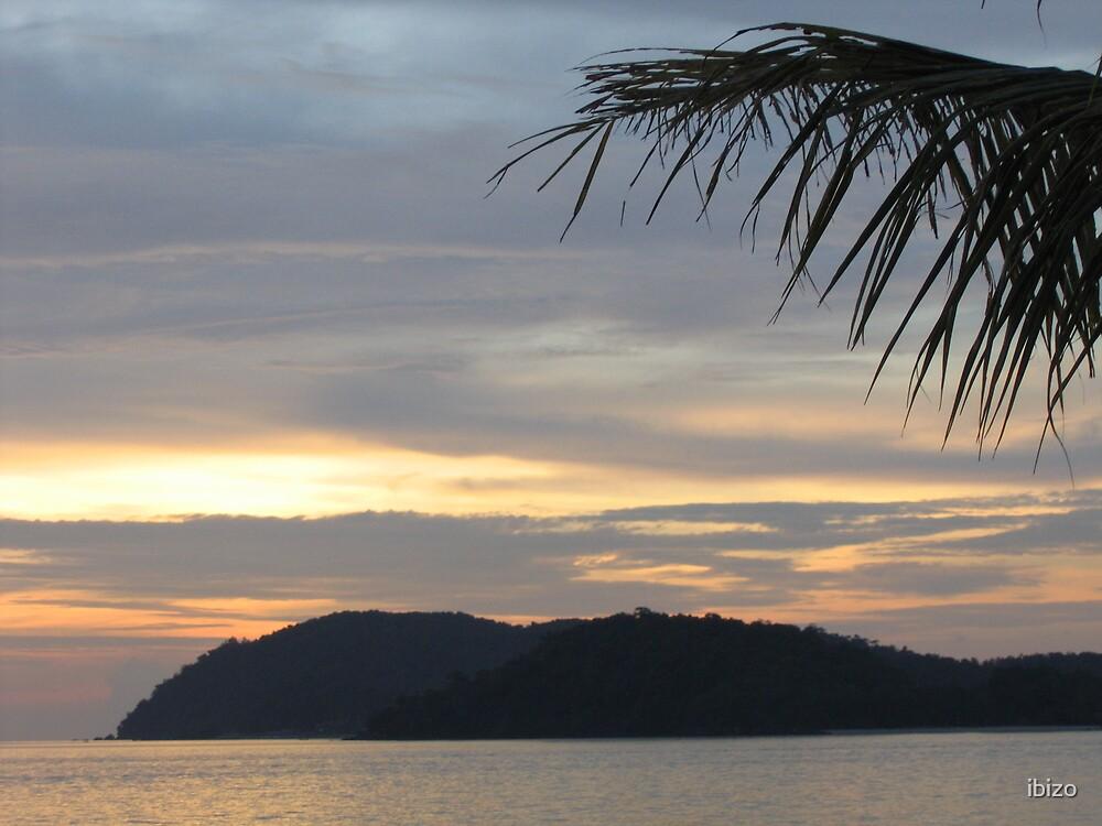 Island Paradise by ibizo