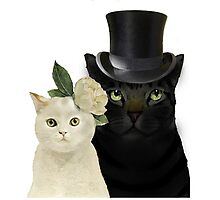 Charming Cats Wedding Photographic Print