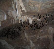 Bat Cave by ibizo