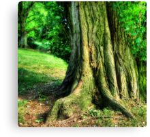 Soft Tree Canvas Print