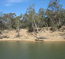 Murray River Drought by Julie Dunne