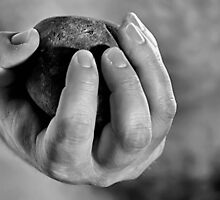Hand & Stone. by Paul Louis Villani
