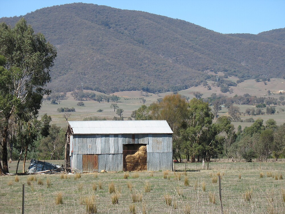 Hay shed by Julie Dunne