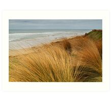 Bancora Surf Beach,Bellarine Peninsula Art Print