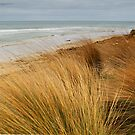 Bancora Surf Beach,Bellarine Peninsula by Joe Mortelliti