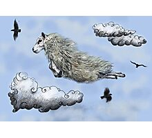 Flying sheep Photographic Print