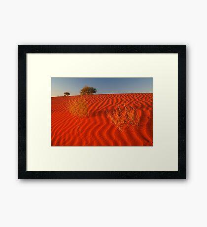 Sundown Madigan Line Simpson Desert Framed Print