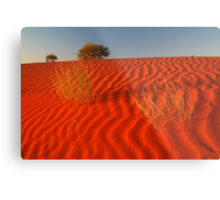 Sundown Madigan Line Simpson Desert Metal Print