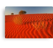 Sundown Madigan Line Simpson Desert Canvas Print