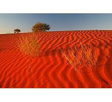Sundown Madigan Line Simpson Desert Photographic Print