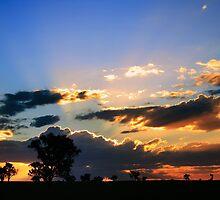 Outback Sunset by David Haviland