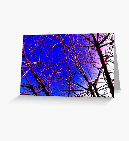 Colorful Red and Blue Bough Design Greeting Card