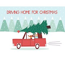 Driving Home For Christmas Photographic Print