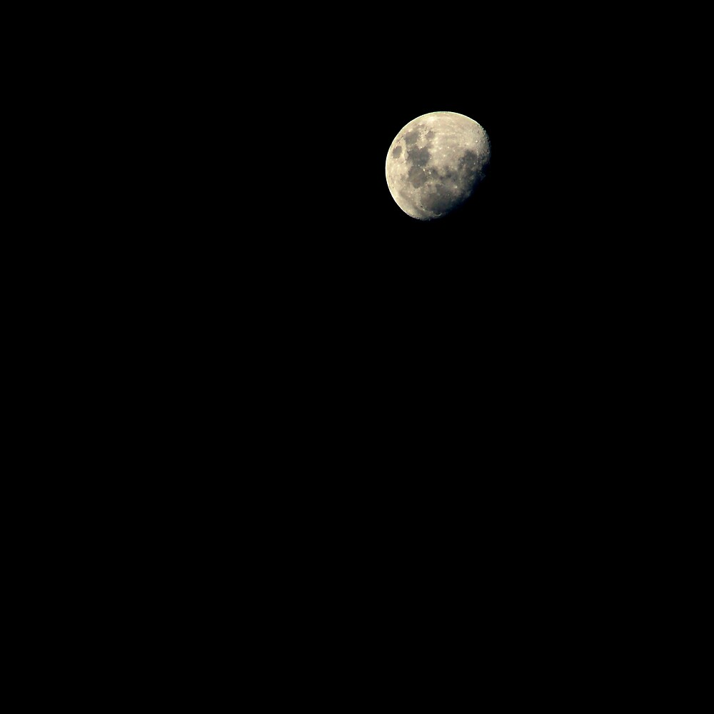 La Luna by Fiona  Braendler