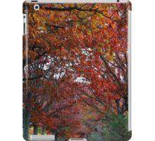 Colorful Canopy iPad Case/Skin