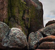 Emerging Colors in Rocks by Wayne King