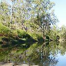 Mums Backyard Creek by MardiGCalero