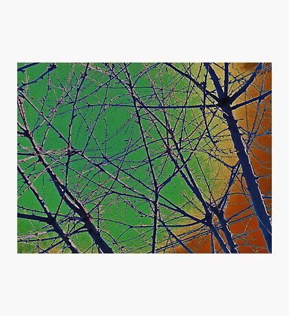 Colorful Green and Red Bough Design Photographic Print