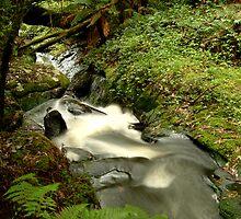 Rushing Waters,Triplet Falls,Otway's by Joe Mortelliti