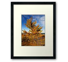 Sheldon Marsh - Autumn Beach Framed Print