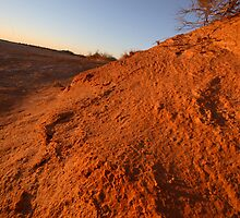 Simpson Desert by Renee Driscoll