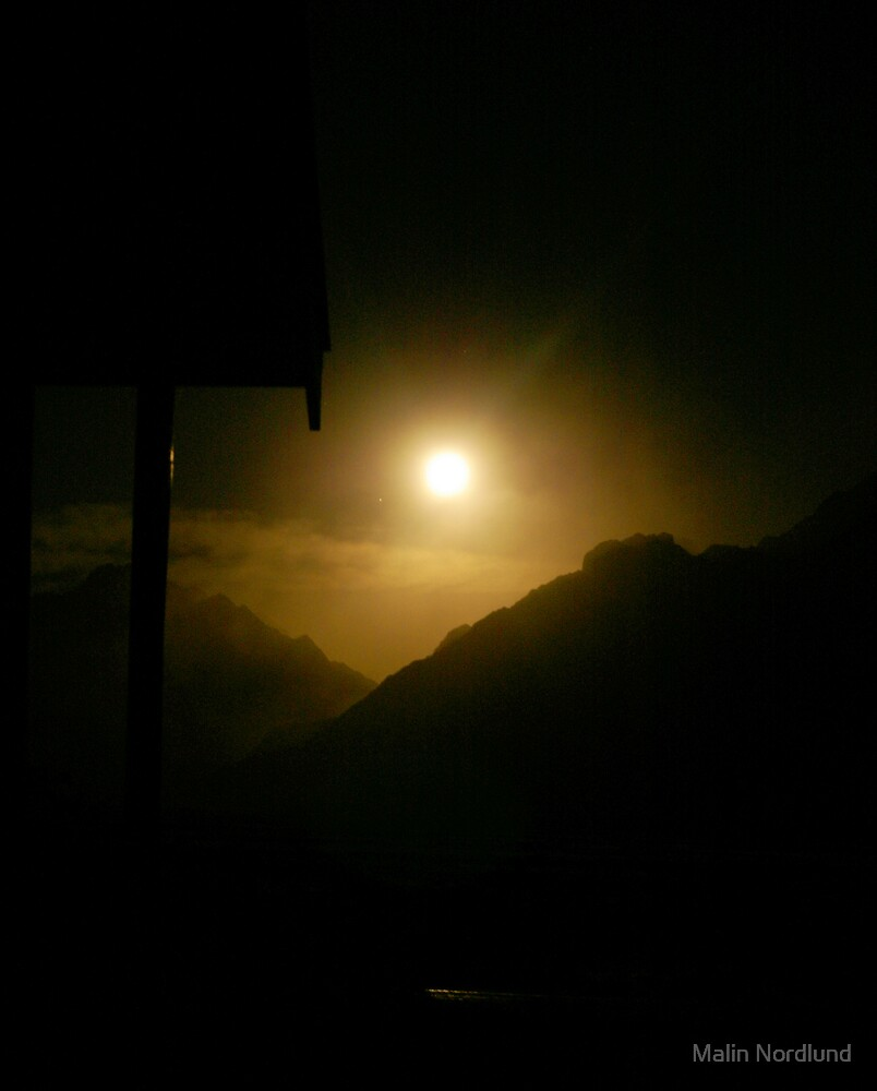 moonlight wonder by Malin Nordlund