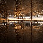 Winter evening by a pond in a park by Susanna Hietanen