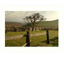 Barrabool Hills Cattle Yard Art Print