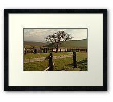 Barrabool Hills Cattle Yard Framed Print