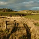 Rosebury Hill Pipers Creek Macendon by Joe Mortelliti