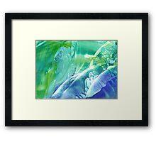 Glade #5 Framed Print