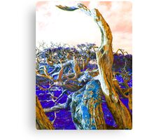 Poisoned Earth Canvas Print