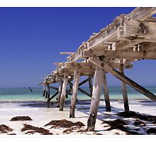 Old Eucla Jetty by JAS095