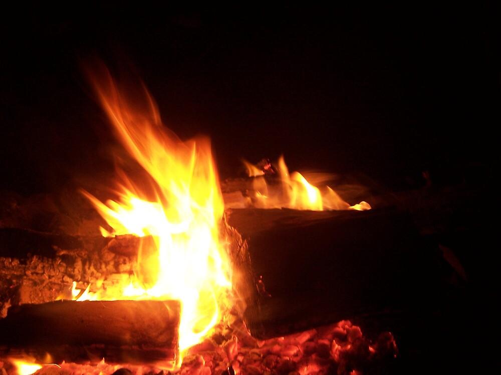 Fire by Princessbren2006