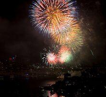 Fireworks by Craig Goldsmith