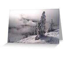 Silverstar #2 Greeting Card