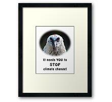 Bearded Vulture against climate change Framed Print