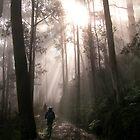 Out of the Fog by John Barratt
