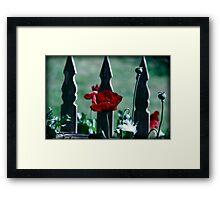 Gothic Poppy Framed Print