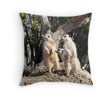 Meerkat Sentries #2 Throw Pillow
