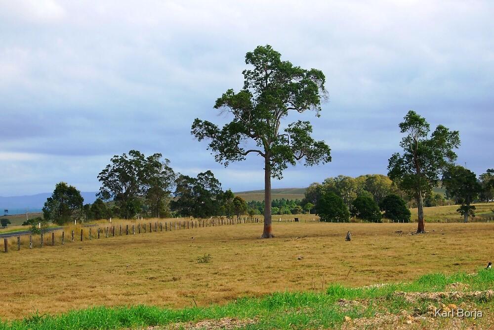 Nammoona Landscape by Karl Borja