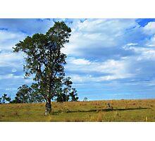 Nammoona Landscape View Photographic Print