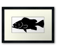 Speckled Hind Fish Silhouette (Black) Framed Print