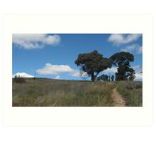 Dead Grass and Trees Art Print