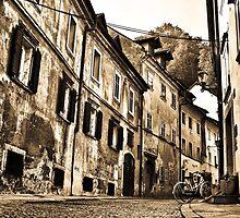 Old Street in Ljubljana by Dmitry Shuster