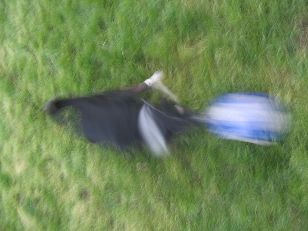 Speedy Dog by noahs