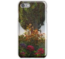lombardy cypress in tuscany iPhone Case/Skin