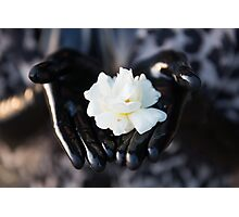 Project L: Shiny and a flower Photographic Print